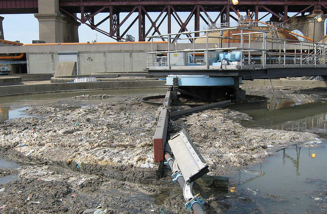 An accumulation of grease and solid debris that make its way into New York City's sewage system. (Photo compliments of NYC Department of Environmental Protection)